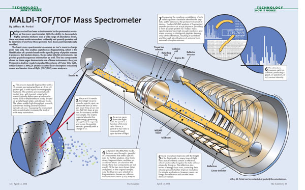 MALDI-TOF/TOF Mass Spectrometer | The Scientist Magazine®