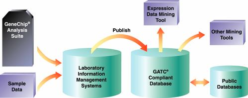 Data Mining for Bioinformatics