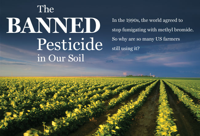 The Banned Pesticide in Our Soil. In the 1990s, the world agreed to stop fumigating with methyl bromide. So why are so many US farmers still using it?