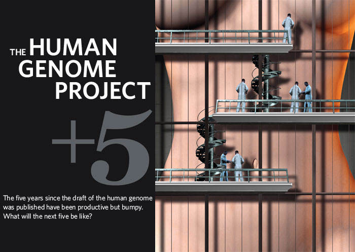 The Human Genome Project Plus 5. The five years since the draft of the human genome was published have been productive but bumpy. What will the next five be like?