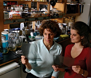 <figcaption>Bonnie Bassler with Karina Xavier in the lab. Credit: PHOTOS COURTESY OF PRINCETON UNIVERSITY</figcaption>