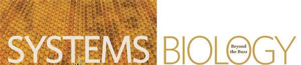 Systems Biology: Beyond the Buzz