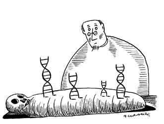 Mummies' parasites | The Scientist Magazine®