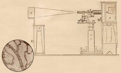<figcaption>Schematic drawing depicting Dr. J.J. Woodward's mechanism for taking photographs through a microscope. Inset: Histological preparations photographed by J.J. Woodward, circa 1876 Credit: Otis Historical Archives, National Museum of Health and Medicine, AFIP, Photo: © Jason Varney | Varneyphoto.com</figcaption>