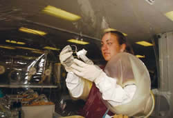 <figcaption>A Taconic animal care technician inspects a genetically engineered