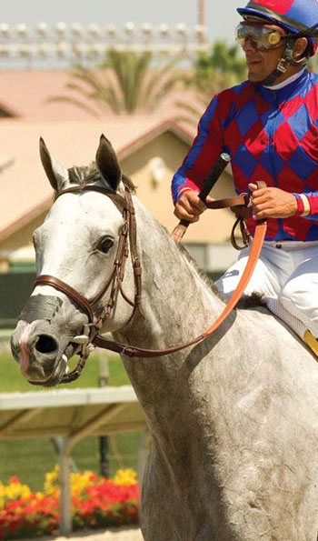 <figcaption> Credit: &#169; BENOIT PHOTO / courtesy of Del Mar Thoroughbred