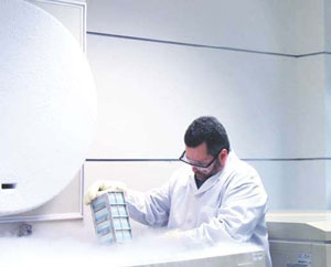 <figcaption>A researcher at Lexicon Pharmaceuticals Credit: Courtesy of Lexicon Pharmaceuticals</figcaption>