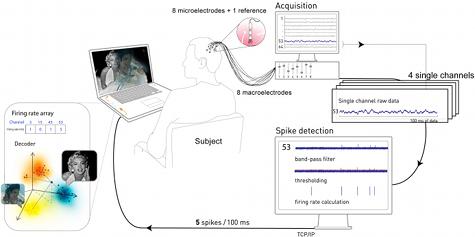 brain machine interface research