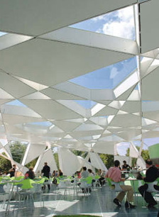 Designing Buildings Using Biology The Scientist Magazine 174